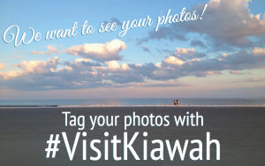 Share Your Kiawah Island Photos